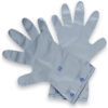 Silver Shield Chemical Gloves